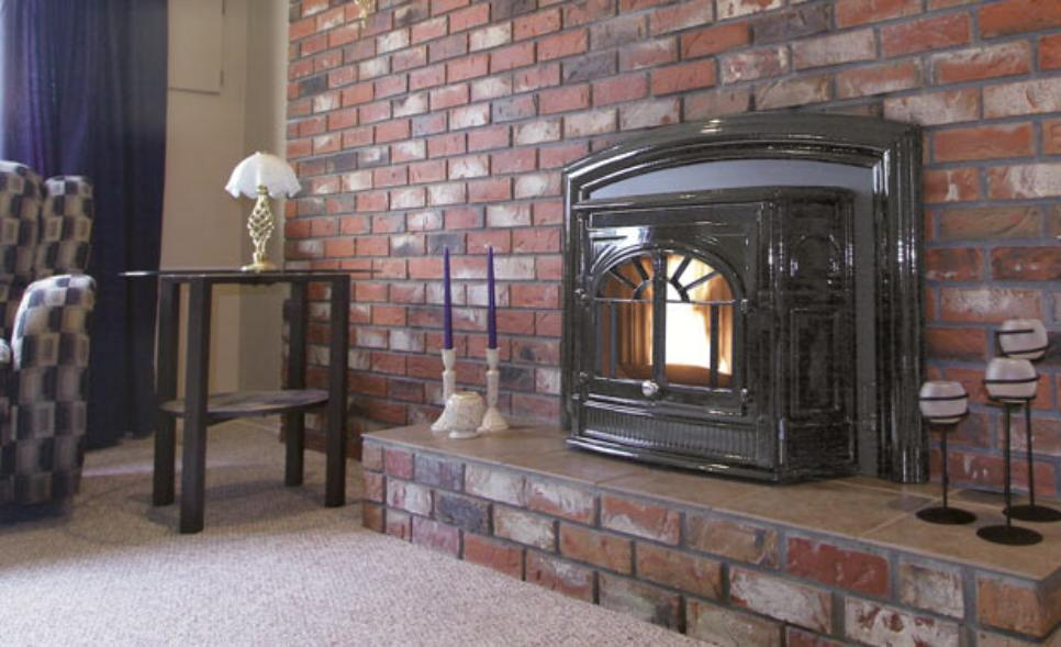 Enviro Empress Fireplace Insert